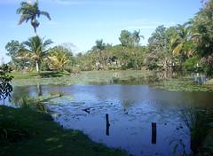 Day 4 - Zapata Swamp