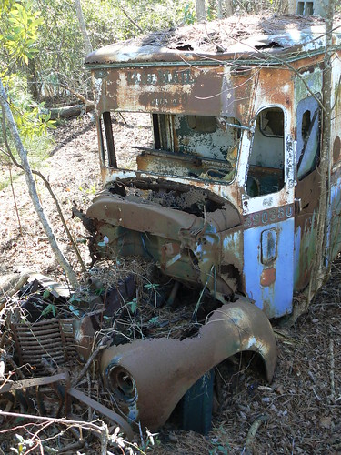 Camden County Jeep Trail - Car Fossil - Front of Mail Truck