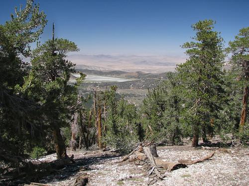 Sugarloaf Mountain 10