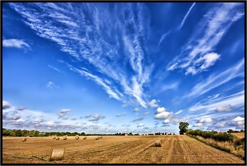 August Sky.