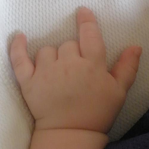 My Niece's Hand