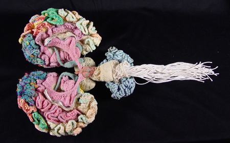 Karen Norberg is a mad knitting scientist!
