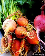 Beets at the Florence Farmers Market