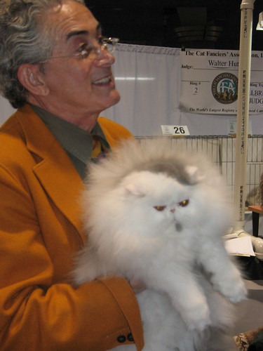 Cat Show Judge, Walter Hutzler