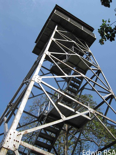 Bird watching tower