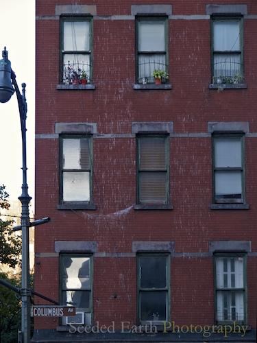 Walking the Sidewalks of New York