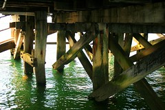 Under the Jetty (Kingscote, KI)