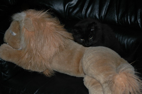 I has deep thoughts, and a lion!