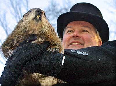 Marmota Phil