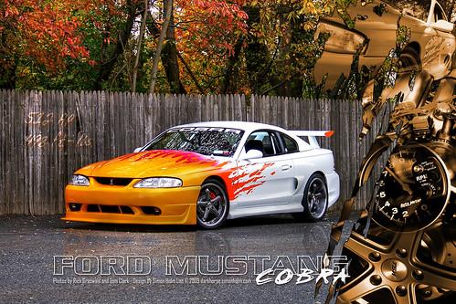 Tom's Mustang Cobra Poster