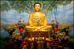 Siddhartha Gautama Buddha