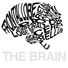 The Brain Typography