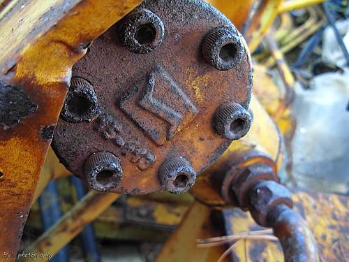tratto da flickr.com dallalbum di Dob_Herr_Mannu Py^