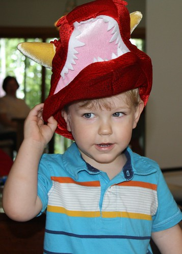 Dinosaur hat (cropped)