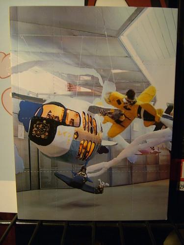 Air Show Misaki Kawai