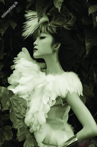 Like a bird - DMC (15)