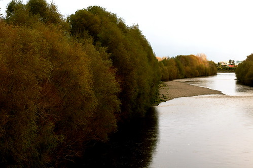 Saturday: The Hutt River in Autumn