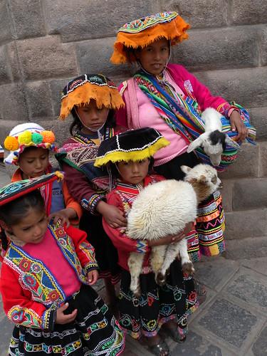 Look! Baby alpacas!
