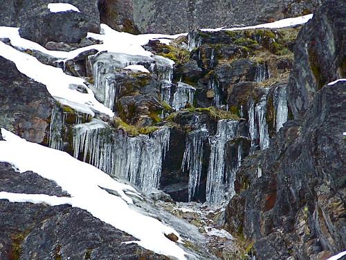 Icicles at Buffalo Bill Creek
