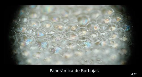 Panorámica de Burbujas