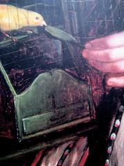 Denton Welch, Voce da una nube, Casagrande 2006, Marco Zücher progetto grafico, ill. di cop.: Ritratto della Signora Rossi di Antonio Rinaldi (part.)