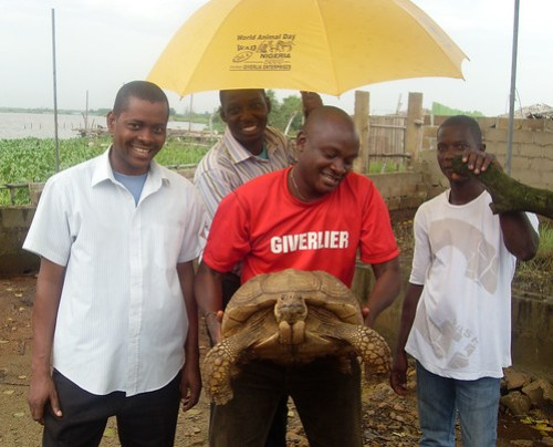 Giverlia E-Pet, Nigeria visit a zoo in 2008 to check at welfare standards.