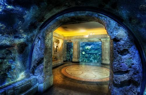 Shark Reef Aquarium Las Vegas Nevada