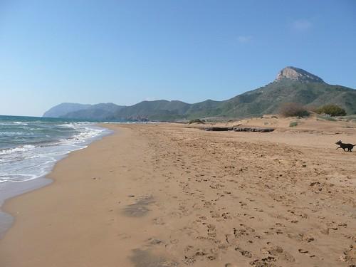 Playa Larga - Calblanque