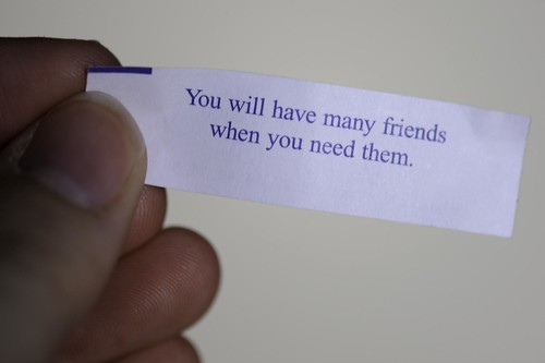 "256/365: ""you will have many friends when you need them"""