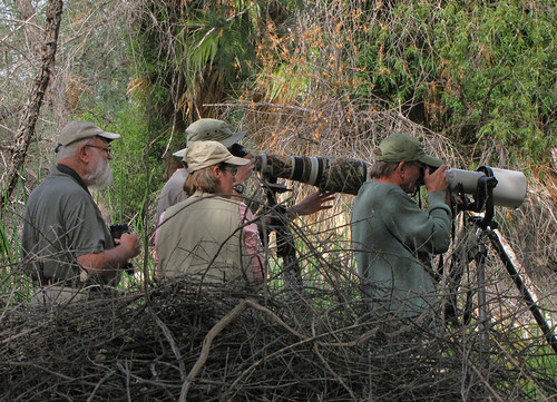 Birders at Sweetwater Wetlands by SearchNetMedia