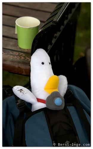 Walter Duck