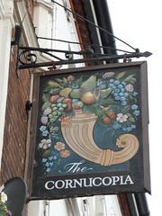 Cornucopia sign  066