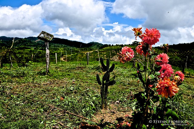 KLR 650 Trip Colombia 134