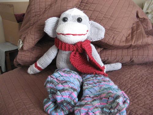 Monkey wearing Monkey Socks