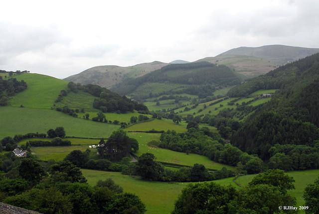 Hills still green