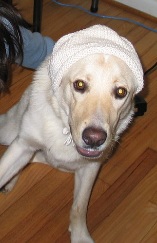 First knitted hat?