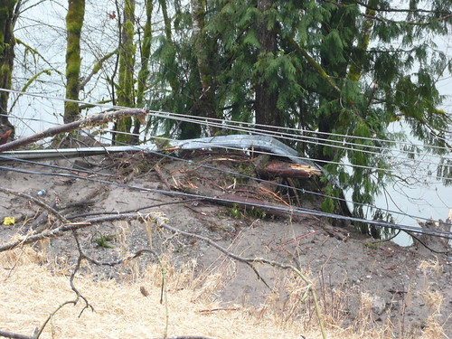 Guardrail and power lines tied up by Washington State Dept of Transportation.