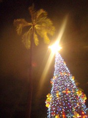 Mele Kalikimaka - Christmas in Hawaii 2008