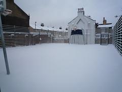 Snow Day 02-02-09 (17)