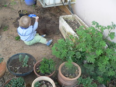 DS helping in the garden
