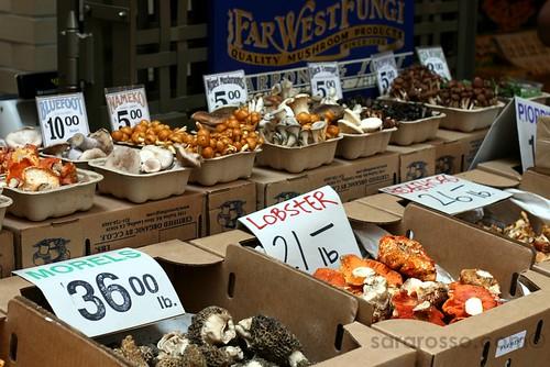Mushrooms, mushrooms at San Francisco Ferry Building Marketplace