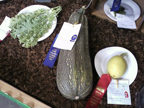 First Place Monster Zucchini