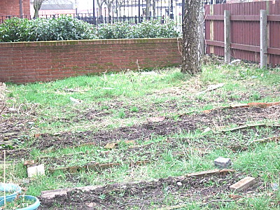 before - side garden. This probably wont be used this year, although i might take up the bricks making up the beds, dig up the grass and sow a wildflower meadow instead.
