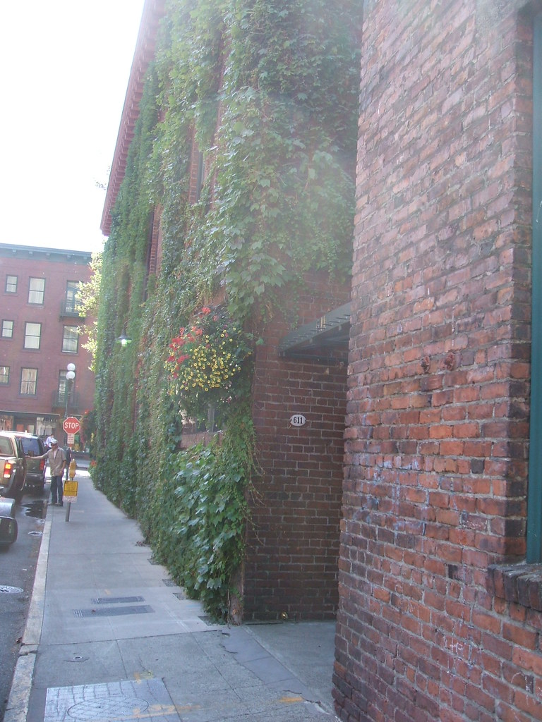 Living wall near Pioneer Square