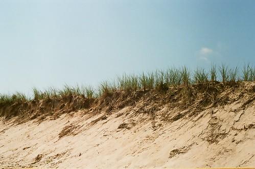 quintessential Cape Cod dunes