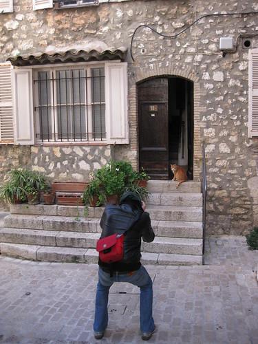 Watch me nail this cat shot, Tourrettes-sur-Loup