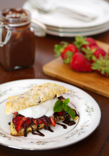 Chocolate Chip Strawberry Shortcake with Bourbon Chocolate Sauce