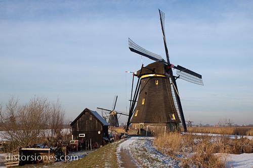 Una postal de Kinderdijk