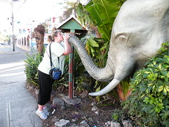 Kissing the Elephant - DSCN6594
