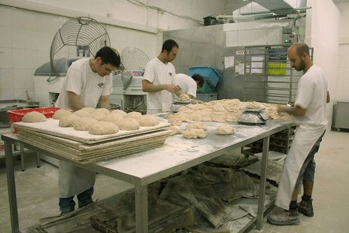 Cutting and shaping loaves